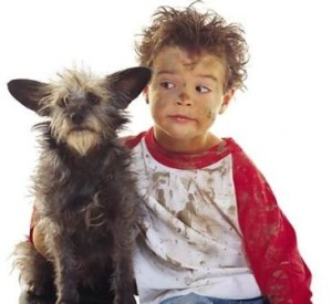 dogs and childhood eczema in infancy